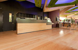 Floor Sanding Preston