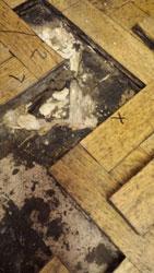 Wood Repairs Lancashire